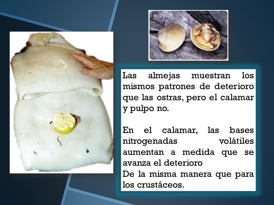 Las almejas muestran los mismos patrones de deterioro que las ostras, pero el calamar y pulpo no. En el calamar, las bases nitrogenadas volátiles aume