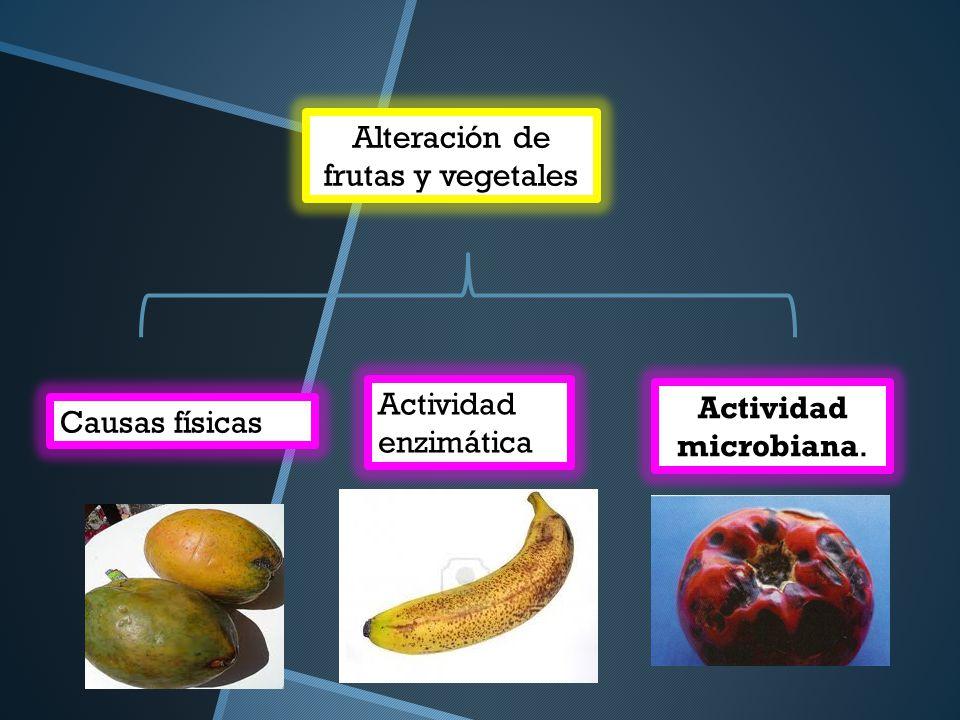 Alteración de frutas y vegetales Causas físicas Actividad enzimática Actividad microbiana.