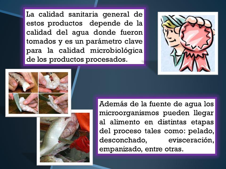 Principales microorganismos presentes en pescado y productos marinos