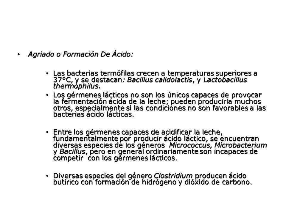 Agriado o Formación De Ácido: Agriado o Formación De Ácido: Las bacterias termófilas crecen a temperaturas superiores a 37°C, y se destacan: Bacillus
