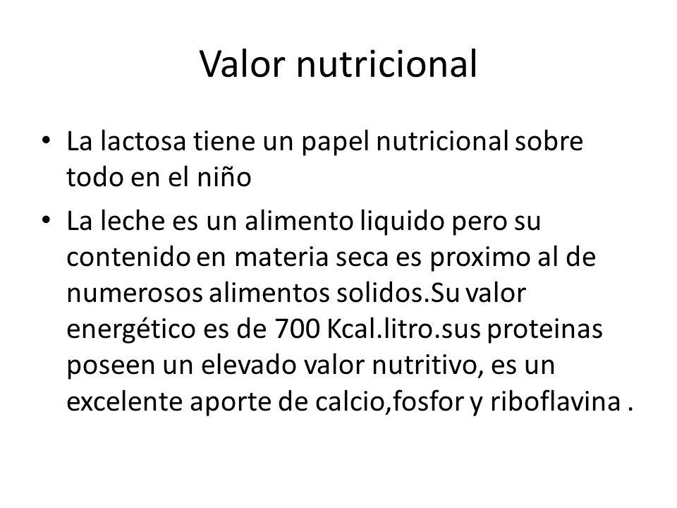 Valor nutricional La lactosa tiene un papel nutricional sobre todo en el niño La leche es un alimento liquido pero su contenido en materia seca es pro