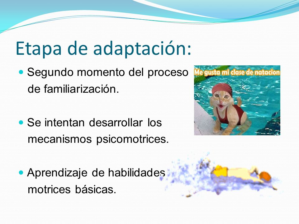 Etapa de adaptación: Segundo momento del proceso de familiarización. Se intentan desarrollar los mecanismos psicomotrices. Aprendizaje de habilidades