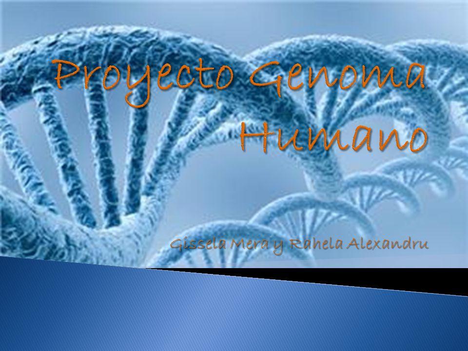 ¿Qué es el Proyecto del Genoma Humano.