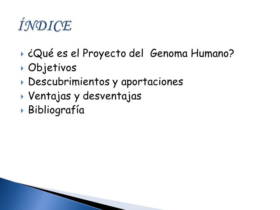 ¿Qué es el Proyecto del Genoma Humano? Objetivos Descubrimientos y aportaciones Ventajas y desventajas Bibliografía