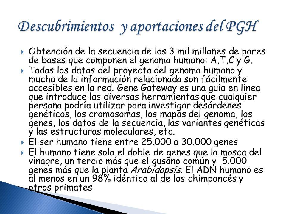 Obtención de la secuencia de los 3 mil millones de pares de bases que componen el genoma humano: A,T,C y G. Todos los datos del proyecto del genoma hu