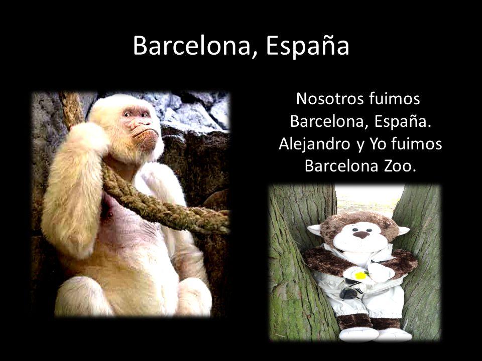 Barcelona, España Nosotros fuimos Barcelona, España. Alejandro y Yo fuimos Barcelona Zoo.