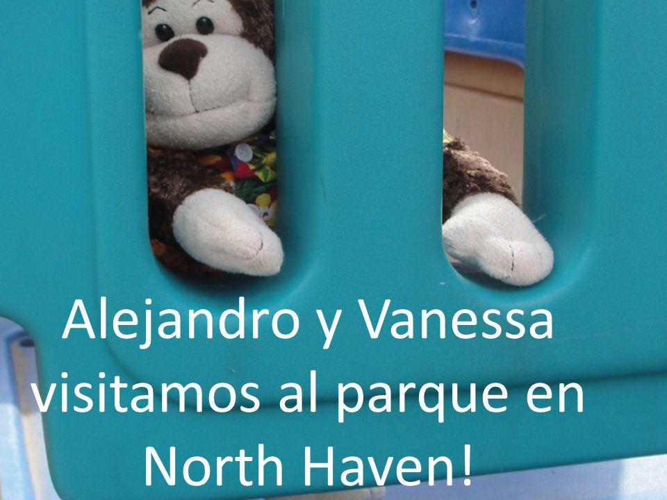 Alejandro y Vanessa fuimos al parque en North Haven. Nosotros declinamos en los columpios!