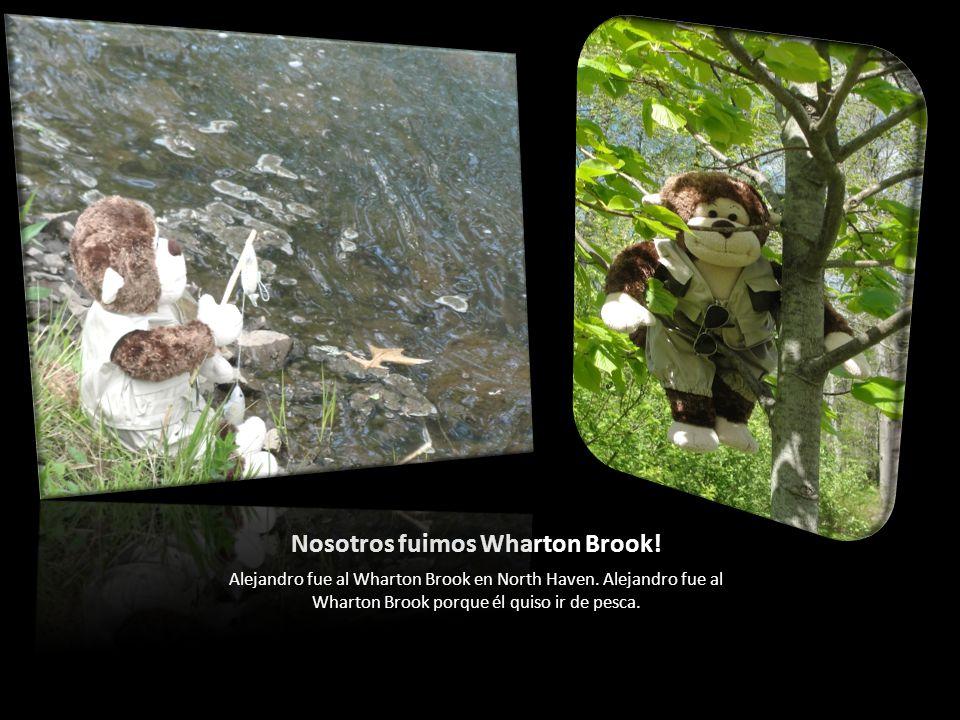 Nosotros fuimos Wharton Brook. Alejandro fue al Wharton Brook en North Haven.