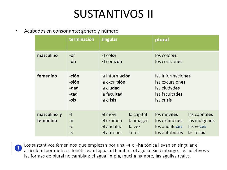 SUSTANTIVOS II Acabados en consonante: género y número Los sustantivos femeninos que empiezan por una –a o –ha tónica llevan en singular el artículo e