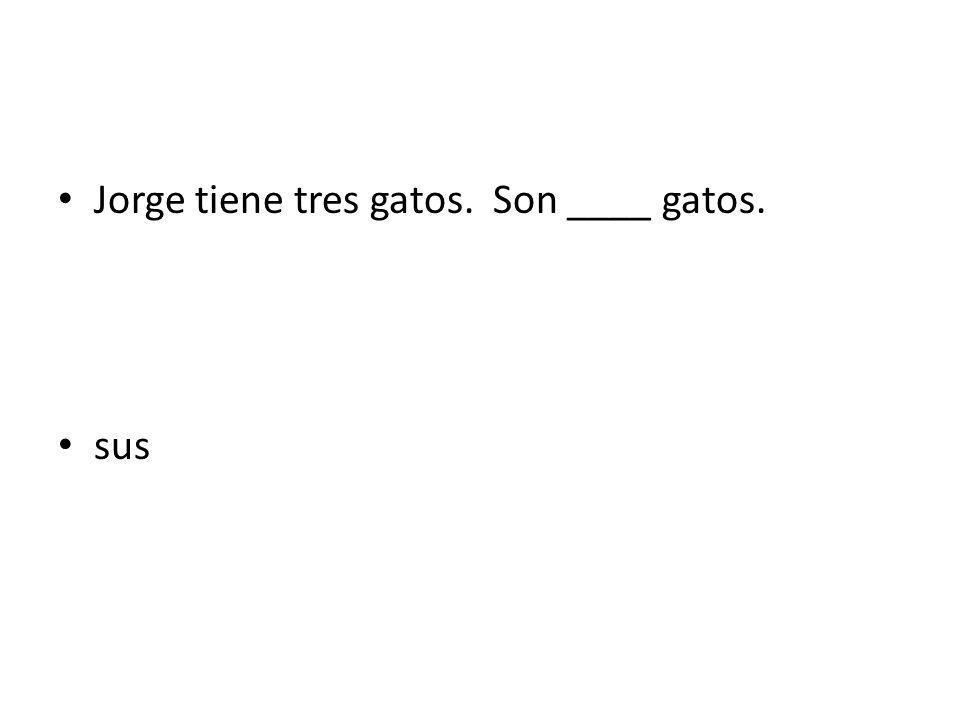 Jorge tiene tres gatos. Son ____ gatos. sus