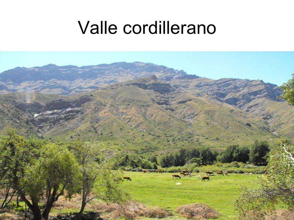 17 Valle cordillerano