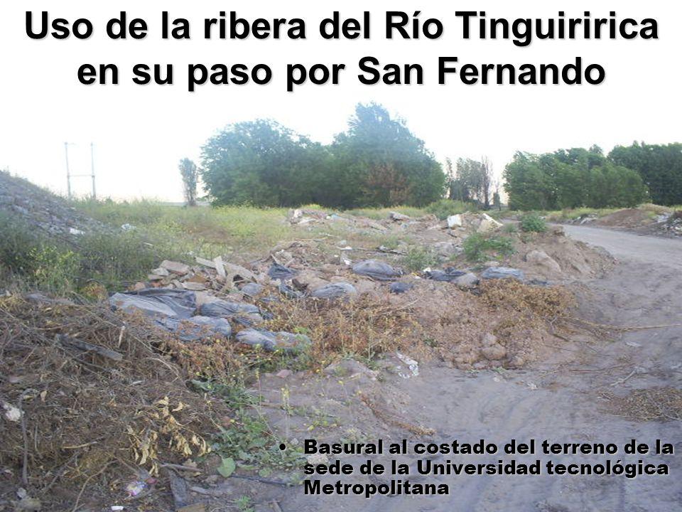 26 Uso de la ribera del Río Tinguiririca en su paso por San Fernando Basural al costado del terreno de la sede de la Universidad tecnológica Metropoli