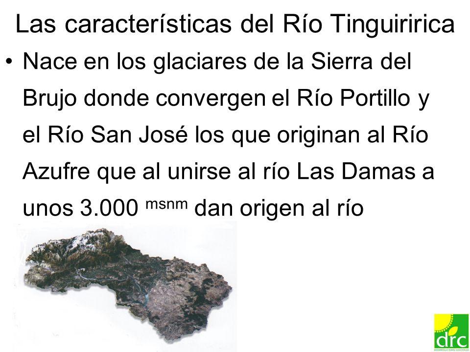 9 Las características del Río Tinguiririca Nace en los glaciares de la Sierra del Brujo donde convergen el Río Portillo y el Río San José los que orig