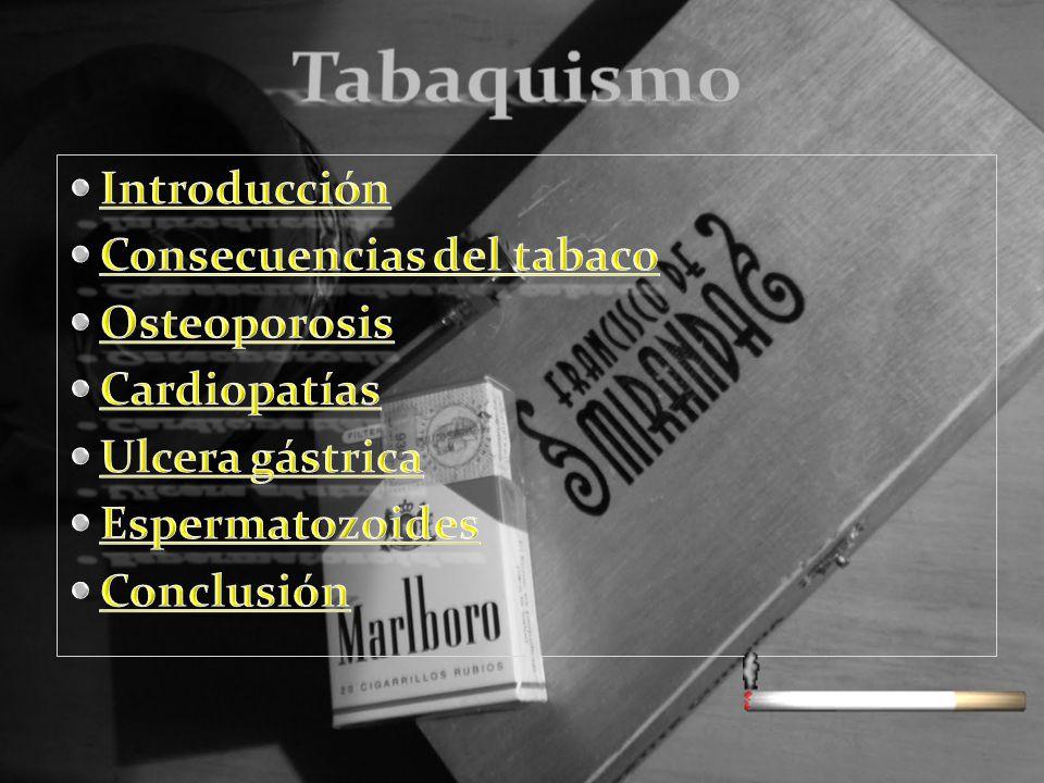 introducción El tabaquismo es una adicción que es muy dañina para nuestro organismo Es una adicción que puede empezar a una temprana edad Esta adicción es muy popular en los jóvenes y en los adultos.