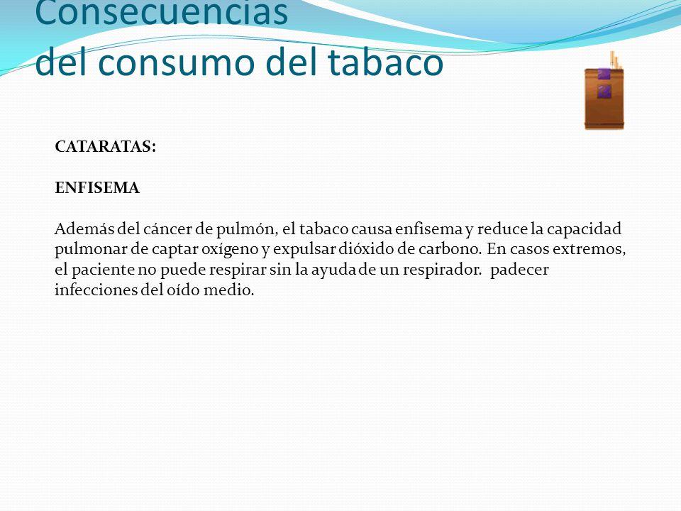 Consecuencias del consumo del tabaco CATARATAS: ENFISEMA Además del cáncer de pulmón, el tabaco causa enfisema y reduce la capacidad pulmonar de capta