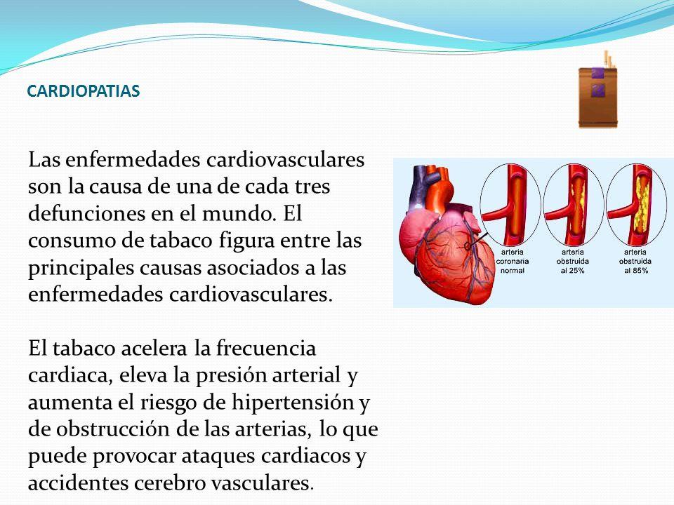 CARDIOPATIAS Las enfermedades cardiovasculares son la causa de una de cada tres defunciones en el mundo. El consumo de tabaco figura entre las princip