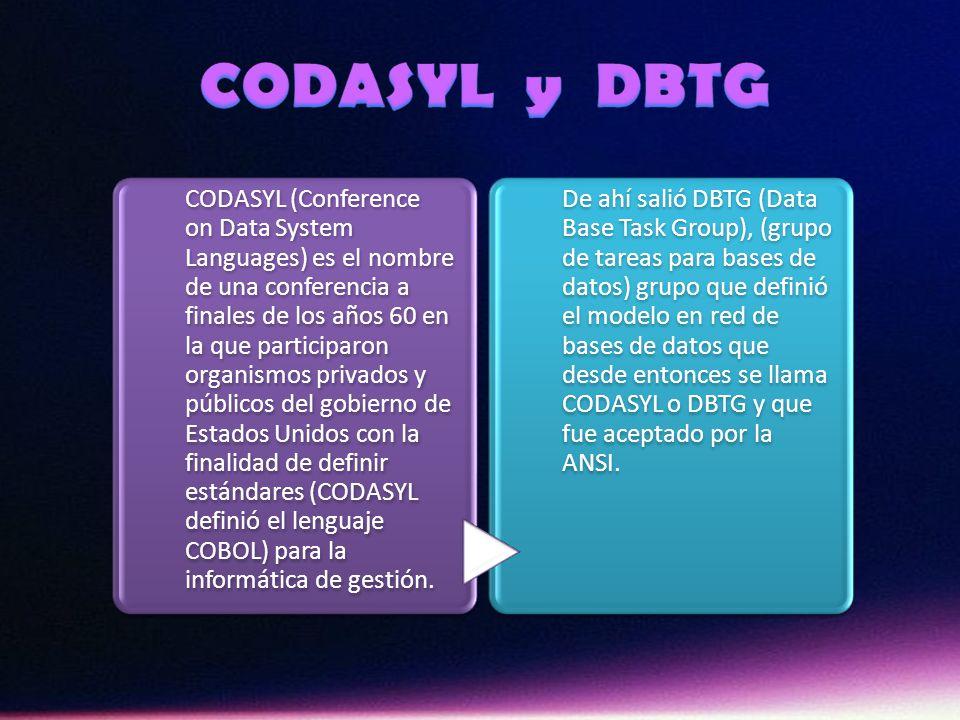 Atendiendo la terminología CODASYL DBTG (Conference on Data Description Language Database tAsk Group) de 1971, para describir los datos desde el punto de vista del programador, éstos se pueden enumerar en: Bit: o digito binario, es simplemente un interruptor en dos sentidos; solo puede tomar los valores 0 y 1.