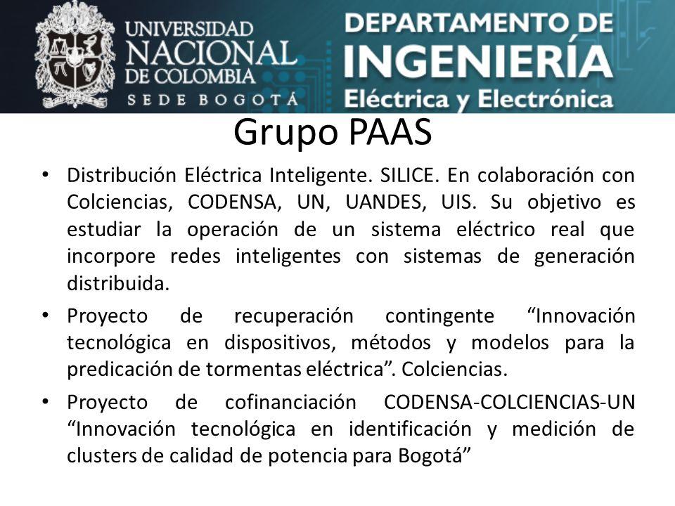 Grupo PAAS Distribución Eléctrica Inteligente. SILICE. En colaboración con Colciencias, CODENSA, UN, UANDES, UIS. Su objetivo es estudiar la operación