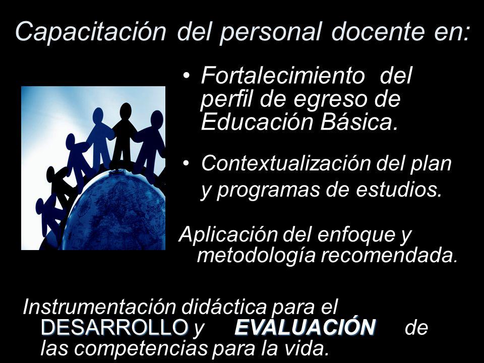 Consolidación de la Reforma de Educación Secundaria Capacitando al personal docente.