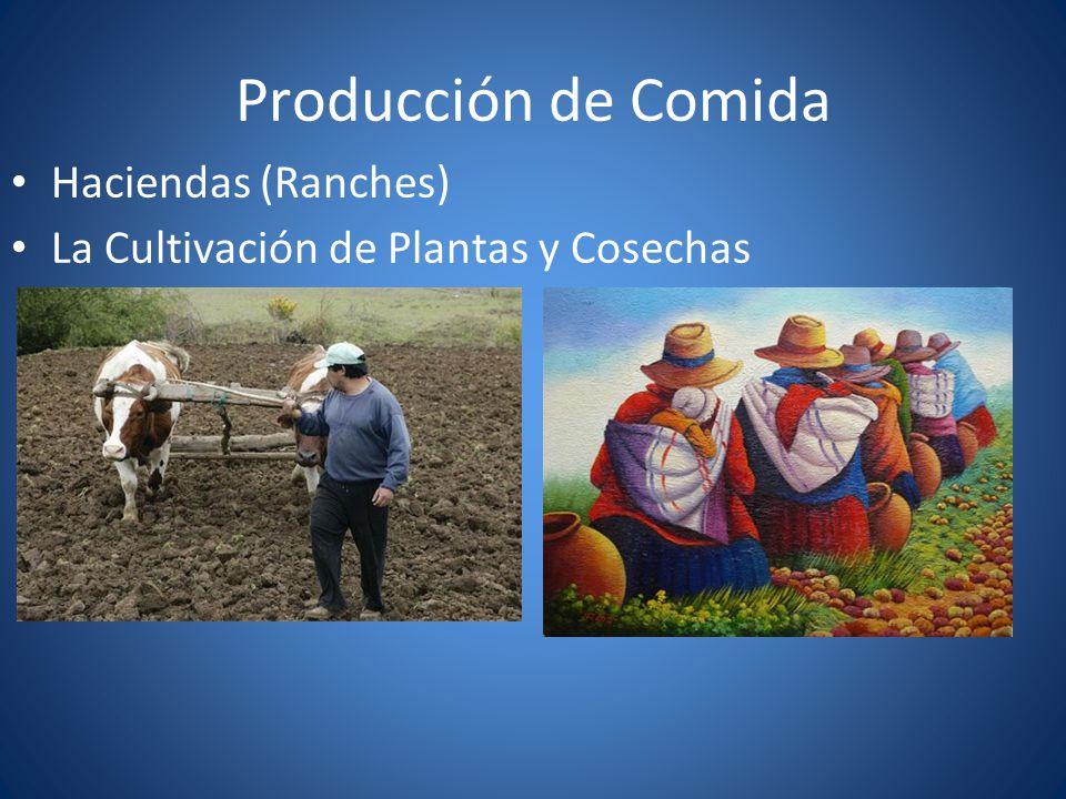 Producción de Comida Haciendas (Ranches) La Cultivación de Plantas y Cosechas