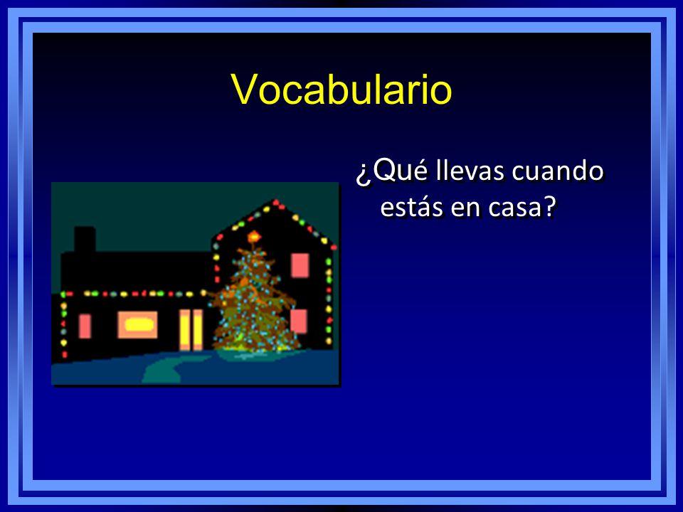 Vocabulario ¿Qu é llevas cuando estás en casa?
