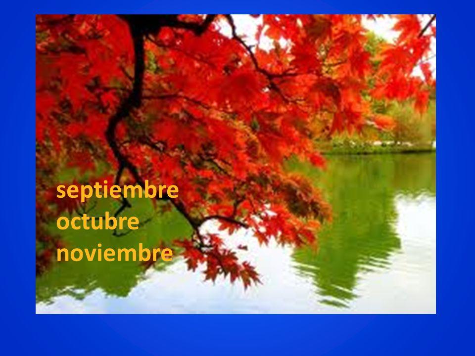 septiembre octubre noviembre