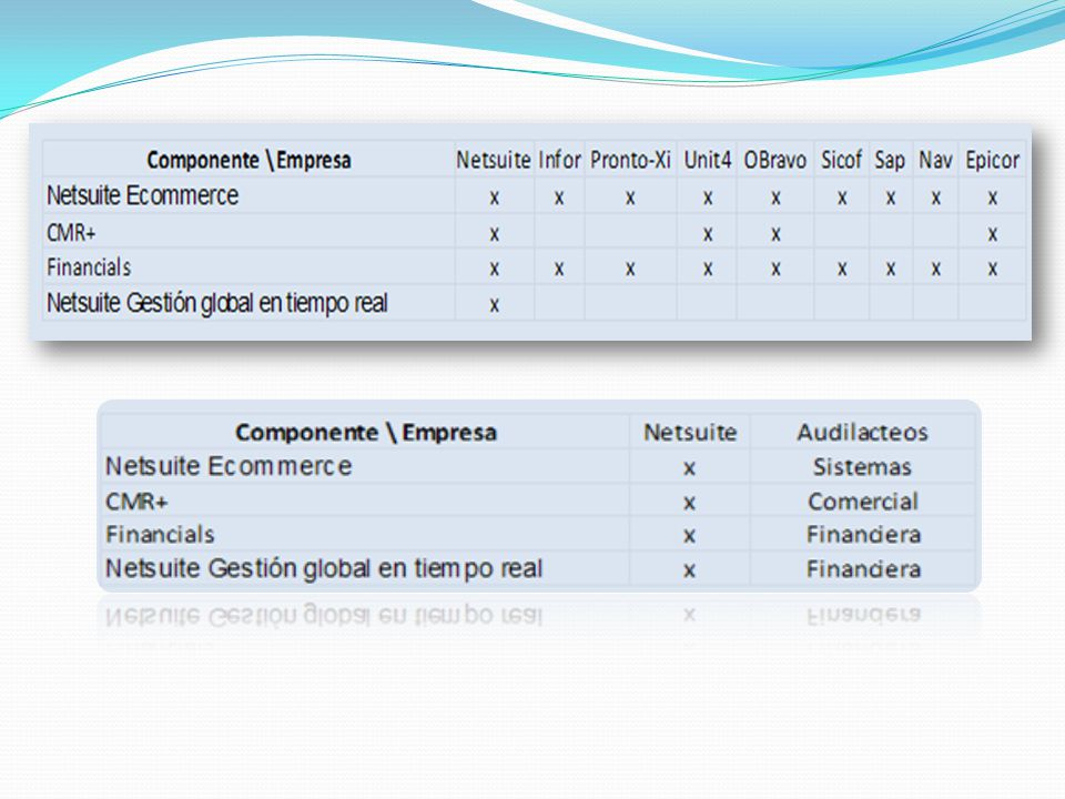 BPSC SA BPSC SA se dedica a la elaboración y aplicación de software de apoyo a la gestión asistida por ordenador.