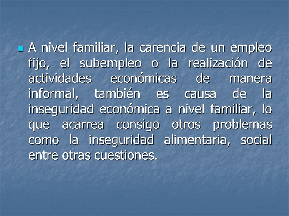 A nivel familiar, la carencia de un empleo fijo, el subempleo o la realización de actividades económicas de manera informal, también es causa de la in