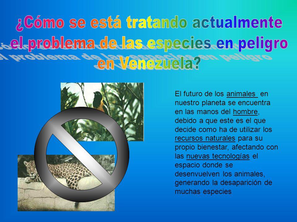 Venezuela ha creado las áreas bajo régimen de administración especial, donde se incluyen los parques nacionales de Venezuela, ya que allí se encuentra concentrada la mayor cantidad de especies del país.