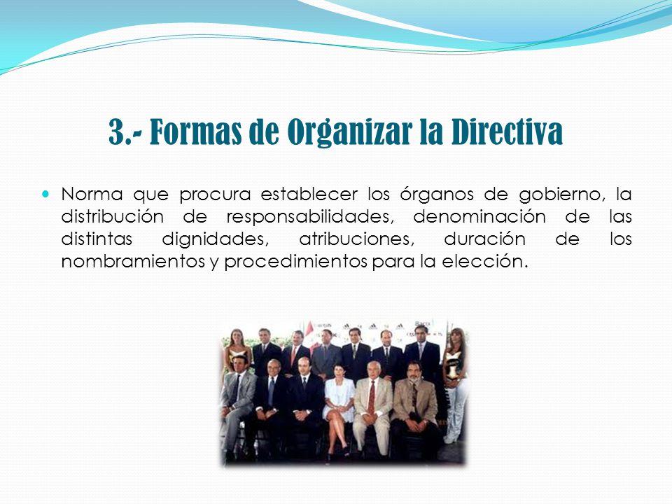 3.- Formas de Organizar la Directiva Norma que procura establecer los órganos de gobierno, la distribución de responsabilidades, denominación de las d