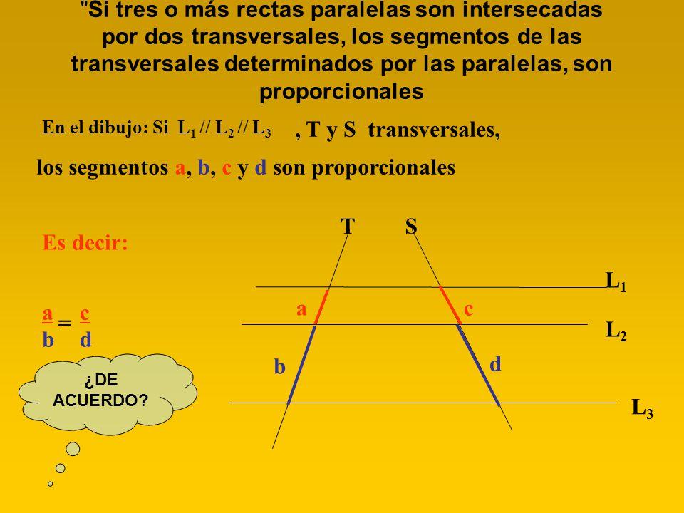 TS Si tres o más rectas paralelas son intersecadas por dos transversales, los segmentos de las transversales determinados por las paralelas, son proporcionales En el dibujo: Si L 1 // L 2 // L 3 L1L1 L2L2 L3L3, T y S transversales, los segmentos a, b, c y d son proporcionales Es decir: a a b b = c c d d ¿DE ACUERDO?