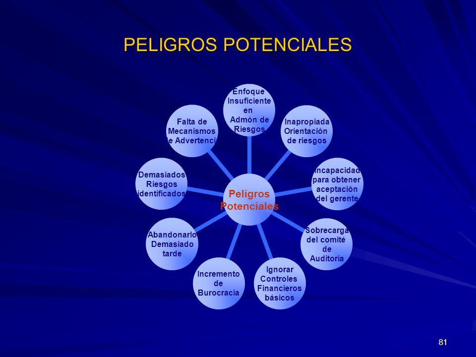 81 PELIGROS POTENCIALES Peligros Potenciales Enfoque Insuficiente en Admón de Riesgos Inapropiada Orientación de riesgos Incapacidad para obtener acep
