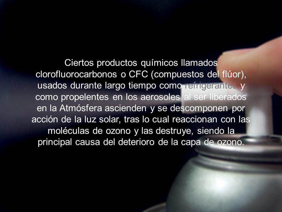 Ciertos productos químicos llamados clorofluorocarbonos o CFC (compuestos del flúor), usados durante largo tiempo como refrigerantes y como propelente