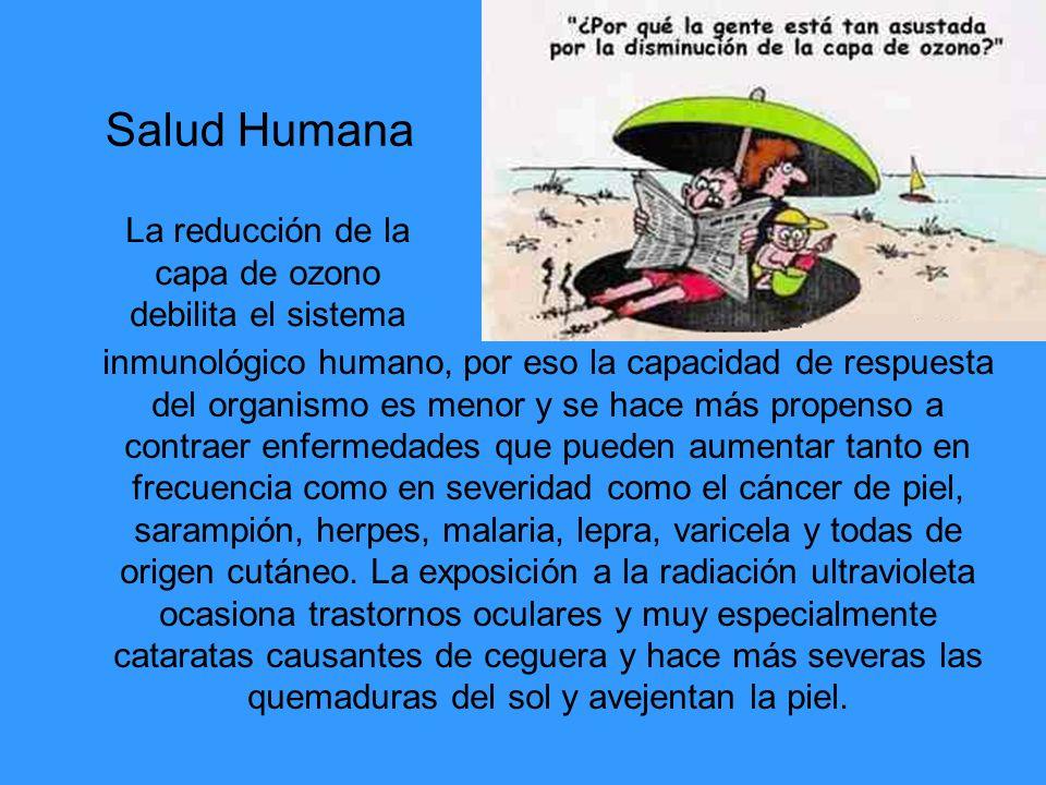 inmunológico humano, por eso la capacidad de respuesta del organismo es menor y se hace más propenso a contraer enfermedades que pueden aumentar tanto