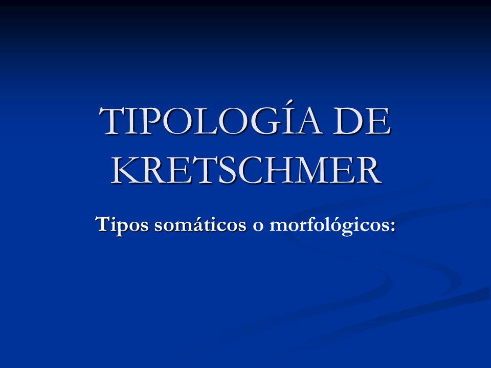 TIPOLOGÍA DE KRETSCHMER Tipos somáticos : Tipos somáticos o morfológicos: