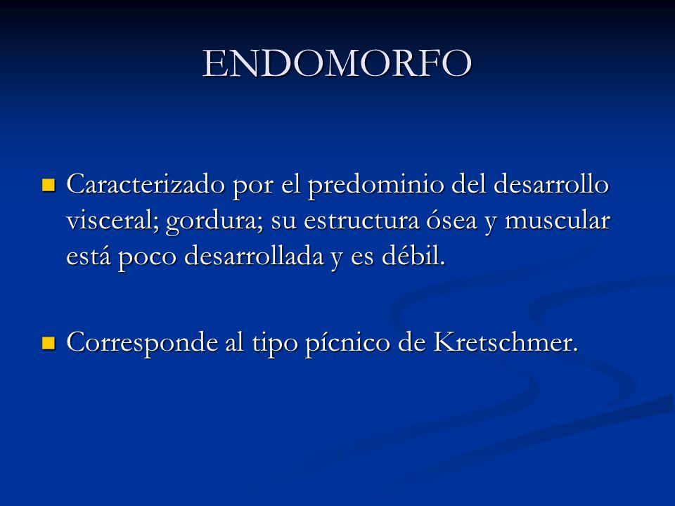 ENDOMORFO Caracterizado por el predominio del desarrollo visceral; gordura; su estructura ósea y muscular está poco desarrollada y es débil. Caracteri