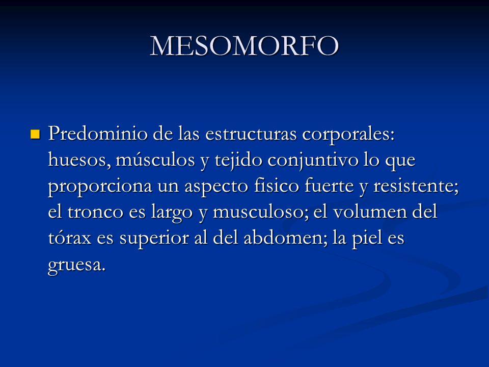 MESOMORFO Predominio de las estructuras corporales: huesos, músculos y tejido conjuntivo lo que proporciona un aspecto fisico fuerte y resistente; el