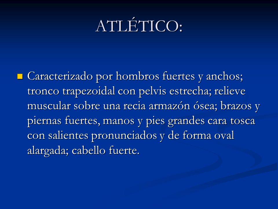 ATLÉTICO: Caracterizado por hombros fuertes y anchos; tronco trapezoidal con pelvis estrecha; relieve muscular sobre una recia armazón ósea; brazos y