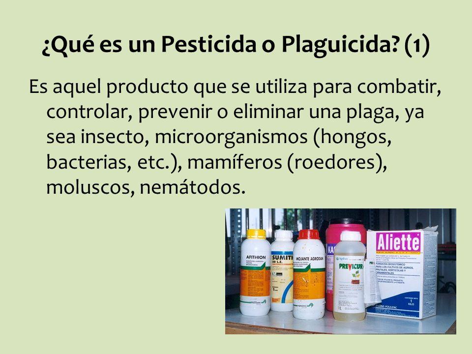 ¿Qué es un Pesticida o Plaguicida? (1) Es aquel producto que se utiliza para combatir, controlar, prevenir o eliminar una plaga, ya sea insecto, micro