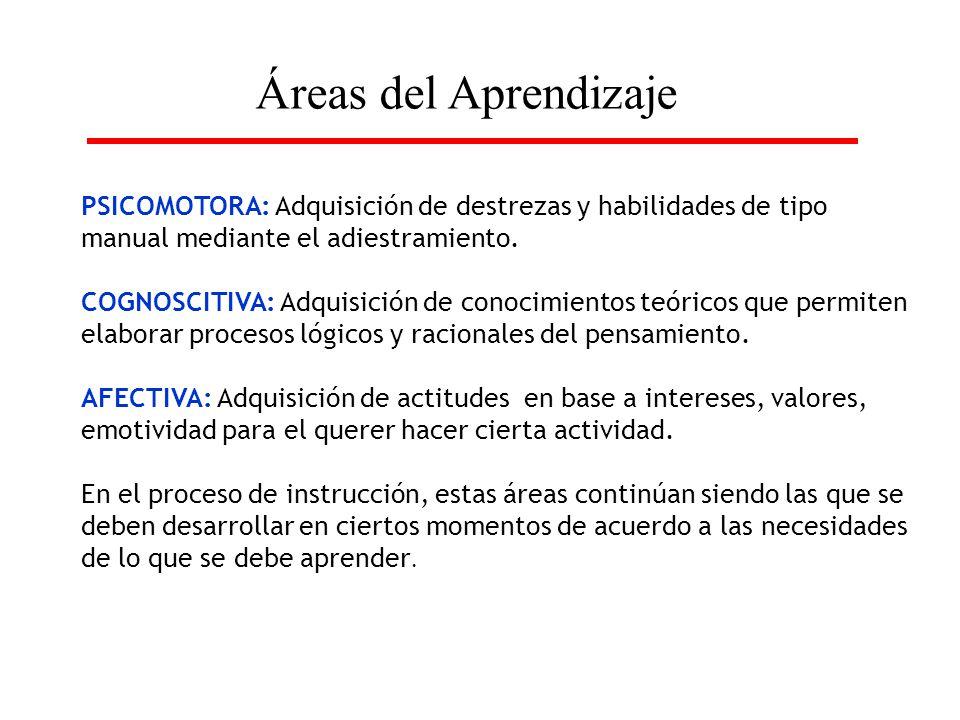 Áreas del Aprendizaje PSICOMOTORA: Adquisición de destrezas y habilidades de tipo manual mediante el adiestramiento. COGNOSCITIVA: Adquisición de cono