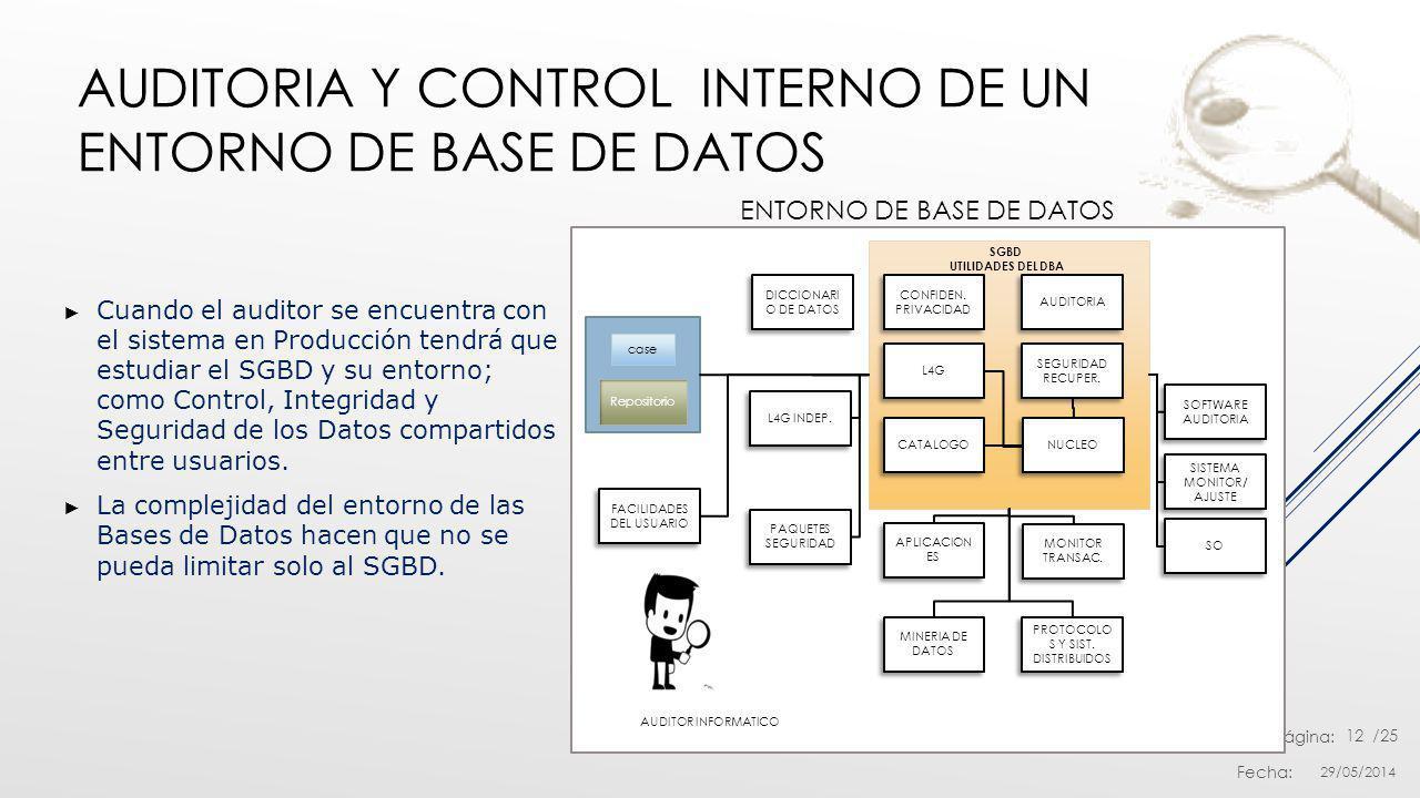 Nro. Página: Fecha: /25 AUDITORIA Y CONTROL INTERNO DE UN ENTORNO DE BASE DE DATOS Cuando el auditor se encuentra con el sistema en Producción tendrá