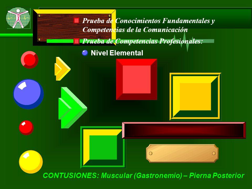 Prueba de Conocimientos Fundamentales y Competencias de la Comunicación Prueba de Competencias Profesionales: Nivel Elemental CONTUSIONES: Muscular (Gastronemio) – Pierna Posterior