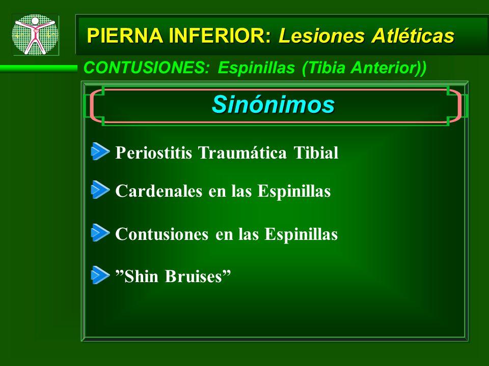 CONTUSIONES: Espinillas (Tibia Anterior)) Sinónimos Periostitis Traumática Tibial Cardenales en las Espinillas Contusiones en las Espinillas Shin Bruises PIERNA INFERIOR: Lesiones Atléticas