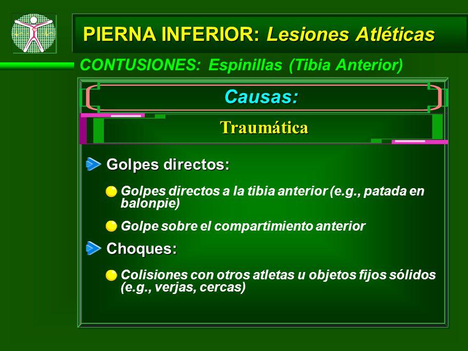 CONTUSIONES: Espinillas (Tibia Anterior) PIERNA INFERIOR: Lesiones Atléticas Causas: Traumática Golpes directos: Golpes directos a la tibia anterior (