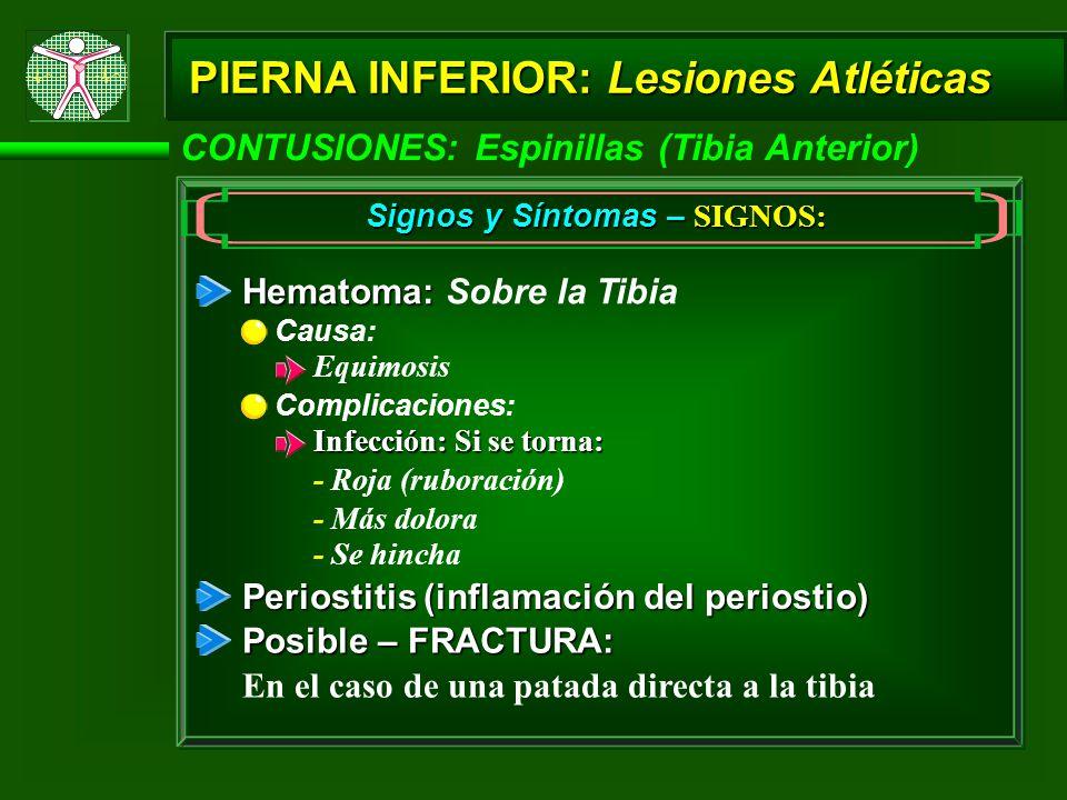CONTUSIONES: Espinillas (Tibia Anterior) PIERNA INFERIOR: Lesiones Atléticas Signos y Síntomas – SIGNOS: Hematoma: Hematoma: Sobre la Tibia Causa: Equimosis Complicaciones: Infección: Si se torna: - Roja (ruboración) - Más dolora - Se hincha Periostitis (inflamación del periostio) Posible – FRACTURA: En el caso de una patada directa a la tibia