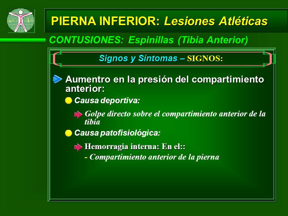 CONTUSIONES: Espinillas (Tibia Anterior) PIERNA INFERIOR: Lesiones Atléticas Signos y Síntomas – SIGNOS: Aumentro en la presión del compartimiento ant