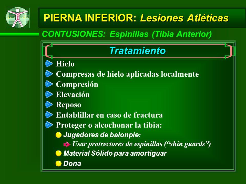 CONTUSIONES: Espinillas (Tibia Anterior) PIERNA INFERIOR: Lesiones Atléticas Tratamiento Hielo Compresión Elevación Reposo Entablillar en caso de frac