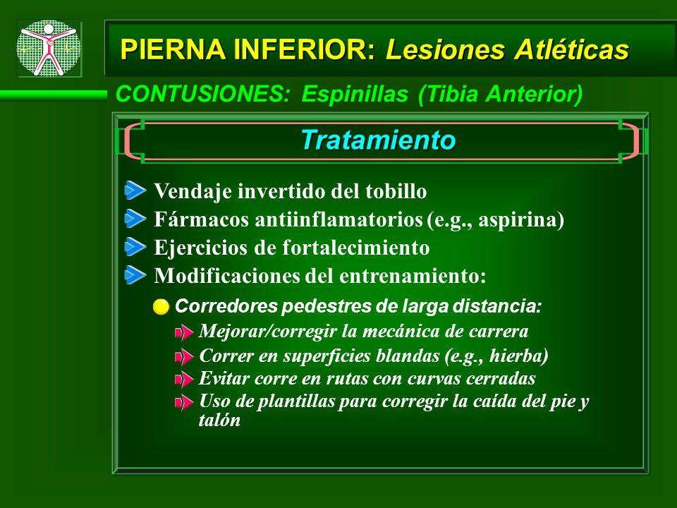 CONTUSIONES: Espinillas (Tibia Anterior) PIERNA INFERIOR: Lesiones Atléticas Tratamiento Vendaje invertido del tobillo Fármacos antiinflamatorios (e.g