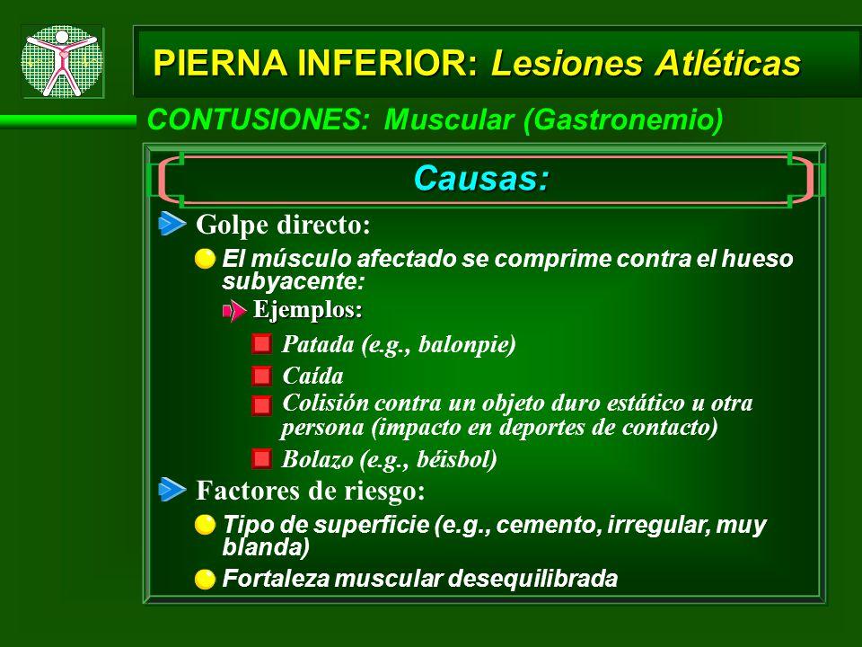 PIERNA INFERIOR: Lesiones Atléticas Causas: El músculo afectado se comprime contra el hueso subyacente: Golpe directo: Ejemplos: Patada (e.g., balonpi