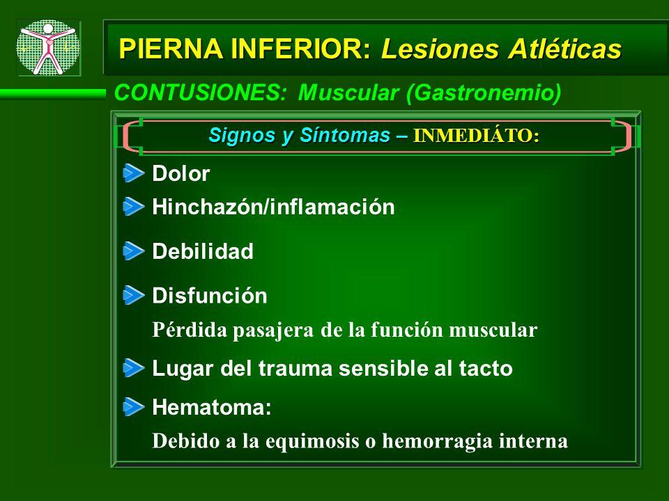 PIERNA INFERIOR: Lesiones Atléticas CONTUSIONES: Muscular (Gastronemio) Signos y Síntomas – INMEDIÁTO: Dolor Hinchazón/inflamación Disfunción Pérdida pasajera de la función muscular Lugar del trauma sensible al tacto Debilidad Hematoma: Debido a la equimosis o hemorragia interna